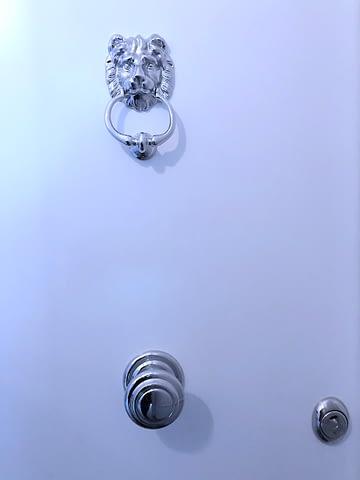 beautiful security doors